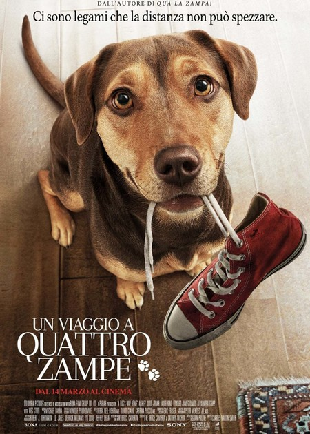 UN VIAGGIO A QUATTRO ZAMPE (A DOG'S WAY HOME)